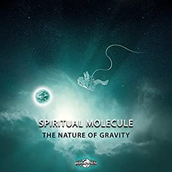 The Nature of Gravity