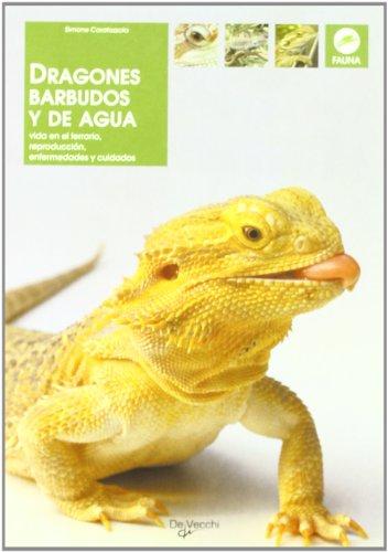 Dragones barbudos y de agua (Animales)