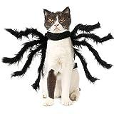 Zoom IMG-2 howny halloween ragno animale domestico