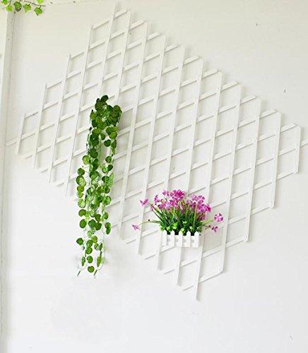 ZENGAI Fence Flower Racks Outdoor Cut Off en Bois Massif Stretching Flower Rattan Climbing Wedding Wall Décoration Wall Flower Pots Shooting Props, 2 Couleurs, Une variété de spécifications