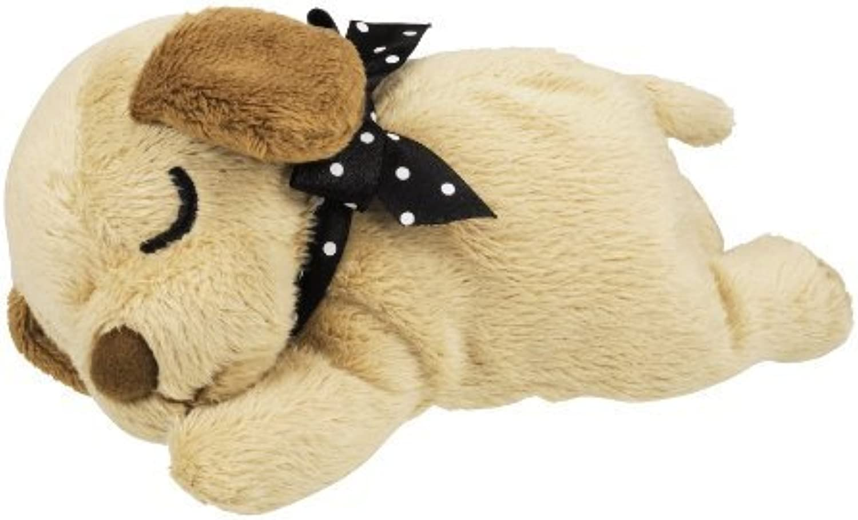 Nemurieru puppy miniature Dachshund (M) (japan import) by Dreams Come True