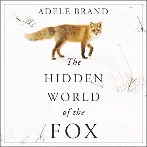 The Hidden World of the Fox cover art