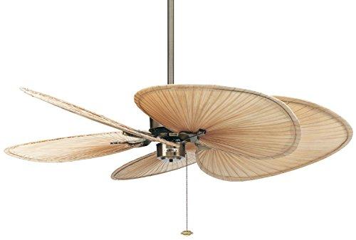 Fanimation The Islander - Ventilador de techo (latón y alas, diseño de palmera)