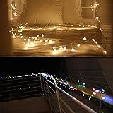 Lagute Starburst LED String Lights, Warm White | 25 ft Long | 300 Waterproof Mini LEDs | 12V | 8 Modes| Decorative Lights for Wedding, Party, Bedroom | Indoor, Outdoor Decor