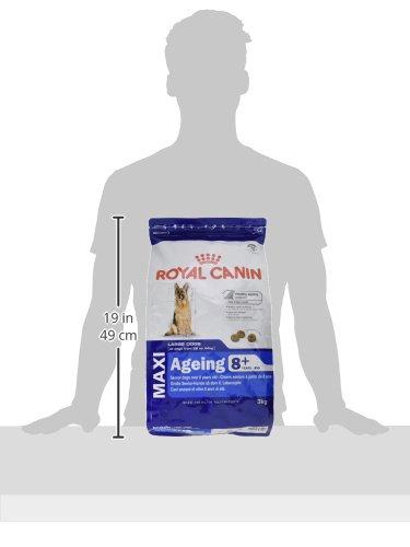 ロイヤルカナンSHNマキシエイジング8+犬用3kg