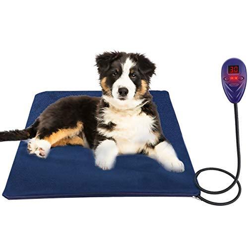 Puppy Pad Display