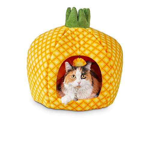 """You & Me Pineapple Cat Bed, 18"""" D, 18 in"""