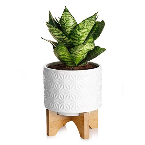 Medium Plant Pot - 5.5 Inch White Cylinder Ceramic Planters for Small Snake Plant Seeding with Arched Bamboo Stand