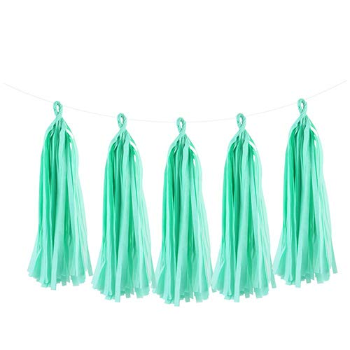 Hanging Decorations for Party 5Pcs 35Cm Tissue Paper Tassels Garland Wedding Decoration Birthday Baby Shower Home DIY Craft Party Supplies,Mint Green