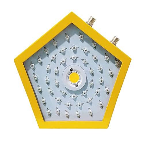 Indoor-LED-Betriebslichter, Pflanzen Lichter, Obst und Gemüse, Kindergarten, Balkon, Gewächshaus, Gewächshaus Eisen