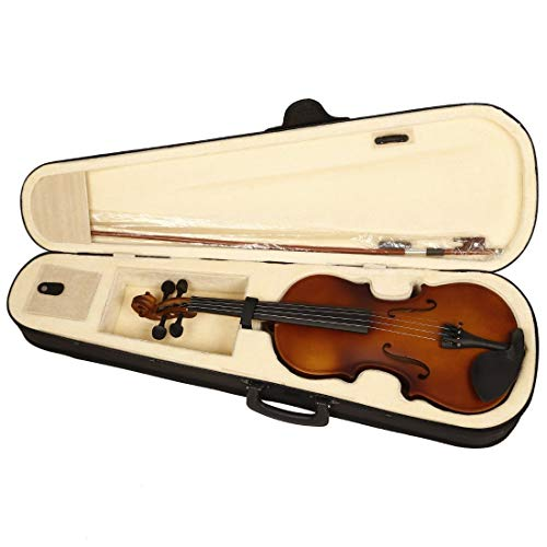Blue Panther Violin With Case, Bow, String Set and Rosin
