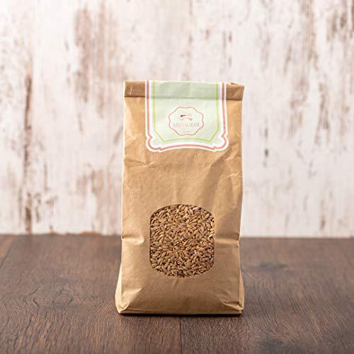 süssundclever.de® Bio Einkorn   Getreide   2 kg (2 x 1 kg)   plastikfrei und ökologisch-nachhaltig abgepackt