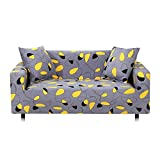 WXQY Funda elástica para sofá con Todo Incluido, Funda para sofá en Forma de L Funda para sillón para Sala de Estar, Funda Protectora para Muebles A17 de 2 plazas