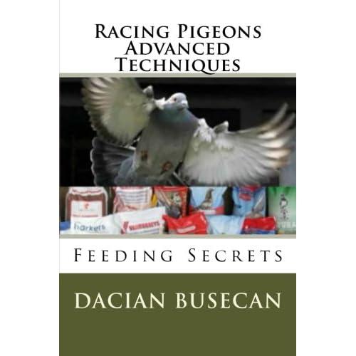 Pigeon Racing: Amazon com