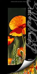Nature in Focus Kalender