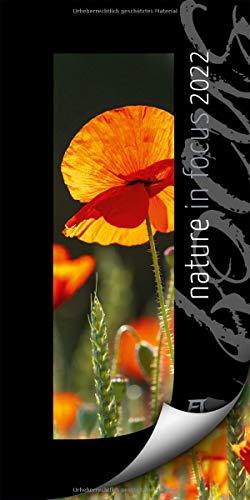 Ackermann Kunstverlag Nature in Focus Kalender Bild