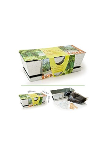 Radis et Capucine Plantes aromatiques en jardinière de Culture, Multicolore, 5 x 5 x 5 cm