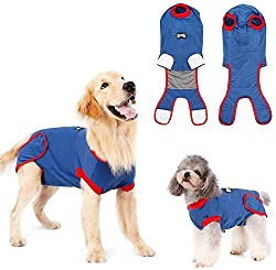 Golden Retriever and Small dog shown wearing a DogLemi Surgical Suit For Dogs.