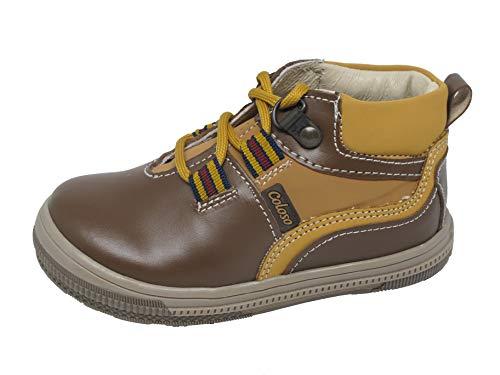 Reviews de Coloso Zapatos los 5 más buscados. 10