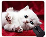 Yanteng Alfombrilla de ratón con Borde Cosido, Gato Animado Accesorios de computadora de Oficina en casa Alfombrillas