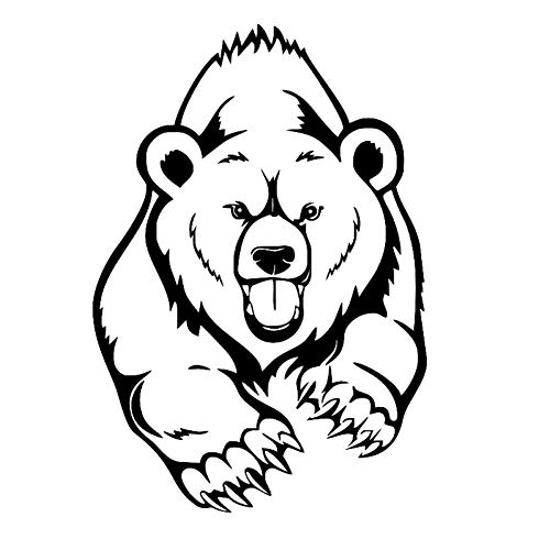 No bran Funny Bear Car Sticker Fashion Auto Detailing Vinyl Products Animal Bomb Decor Laptop Window Decals For Cars Styling Decoration
