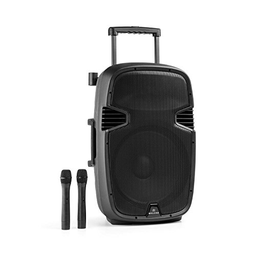 Malone Bushfunk 45 altavoz activo (900 W, Bluetooth, batería, puerto USB, entrada SD, salida RCA, MP3, micro receptor integrado VHF, micrófonos inalámbricos, carcasa ABS)