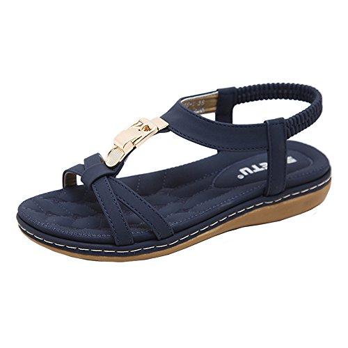 LANSKIRT Sandalias Mujer Verano 2019 Plataforma Zapatos Planos de Moda Sandalias con Hebilla de Metal de Bohemia para Damas Zuecos de Al Aire Libre y Playa Chanclas(Azul_01, 40 EU)