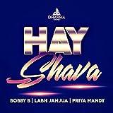 Hay Shava