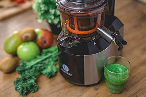 Ventray Slow Press Masticating Juicer,Easy to Clean,Reverse Function, BPA Free,Large Feed Chute,Juice Extractor,Brush,Recipe,Juice Jars,Black