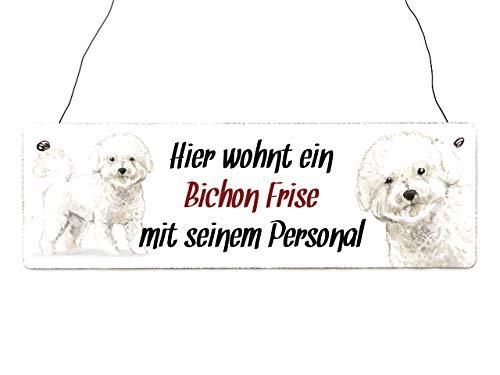 Interluxe Holzschild - Hier wohnt EIN Bichon Frise - Türschild, Dekoschild, Schild als Geschenk für Menschen mit Hund