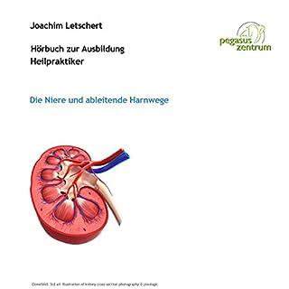 Hörbuch zur Ausbildung für Heilpraktiker: Die Niere und ableitende Harnwege Titelbild