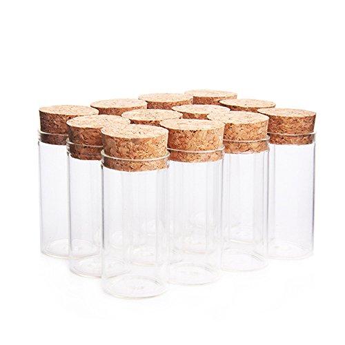 Danmu Art 12 tarros de cristal de 25 ml, 30 x 60 mm, con tapones de corcho de madera