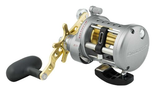 Daiwa Saltist Levelwind Conventional High Speed Reel, 4 (4 CRBB) + 1, 6.1 : 1 - STTLW20HA