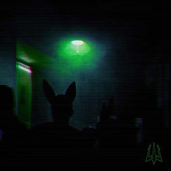 Night in the Pub
