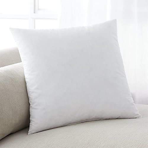SK MERCHANDISE Pack of 2 Hypoallergenic Cushion Pad Stuffer Pillow Insert Square Polyester, Standard/White (22'x22')