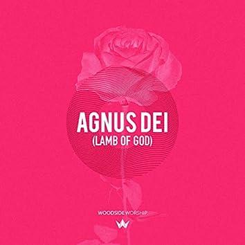 Agnus Dei (Lamb of God)