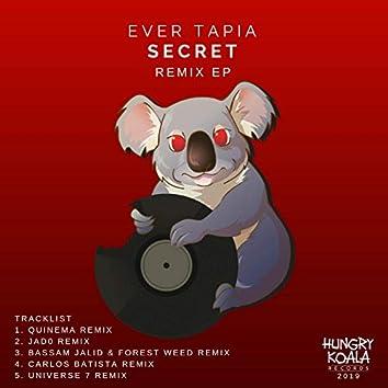 Secret Remix EP
