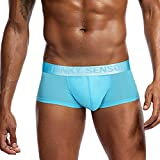 Fanteecy Men Solid Ultra-Thin Boxer Briefs Sexy Breathable Bulge Pouch Underwear Trunks Cozy Stretchy Underpants (Light Blue, M)