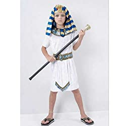 Egyptian Boy Fancy Dress Costume Age 9-12 Years Height 150cm
