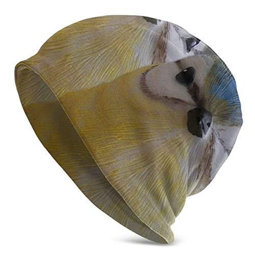 QUEMIN Funny Bird Tit Printed Beanie Hat Slouchy Unisex Beanie Cap Gorro de Punto Gorro de Calavera