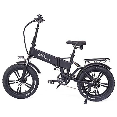 RX20 750W Bicicletta elettrica pieghevole 20 * 4.0 Fat Tire Mountain Bike 48V E-bike Sospensione completa (Black, 15Ah)