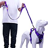 AdventureMore Dog Harness Leash Set, No-Pull Dog Harness, Front Clip Dog Harness, Reflective