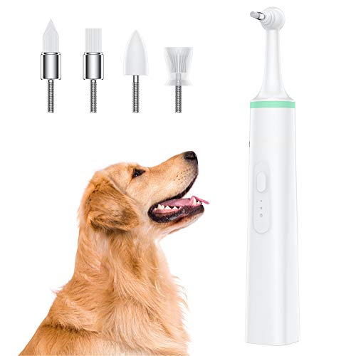 ZYJFP Elektrische tandenborstel tandenpoetser, Teddy hond orale reiniging aan plaque vlekken whitening tools met 4 Brush hoofd
