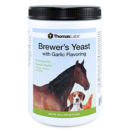 Thomas Labs Brewer's Yeast Garlic (16oz Powder)