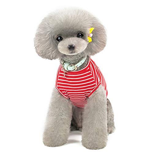 Huisdier Heroic Kleine Hond Kat Puppy Gebreide Jumper Sweater Kleding Comfortabele Kleine Hond Jumper Kat Trui Puppy Sweater Kleding voor Kleine Honden Katten Puppy Roze Rood Blauw Grijs Gras – Gewicht 1.2-9.0 KGS, X-Large