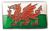 Emaille-Anstecker aus Metall, Motiv: Walisische Flagge, Saint David´s Tag