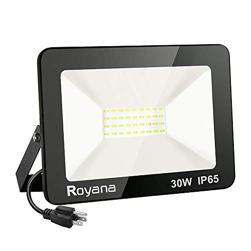 30W LED Flood Light Outdoor with Plug, IP65 Waterproof LED Work Lights, 6000K 3000LM Super Bright Security Light, Portable Daylight White Floodlight Spotlight for Yard Garden Court Lawn