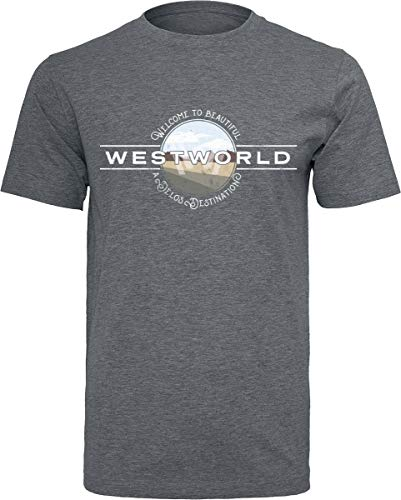Westworld Welcome to Männer T-Shirt Charcoal meliert L
