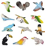 - A set of 12pcs vivid birds toys. - Non-toxic and 100% safe material for kids can play with it freely. - Each bird can stand alone with its typical posture, allowing you to place it anywhere for decoration. - Great for your collection or inspiring y...