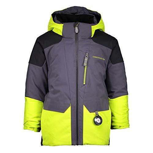 Obermeyer Kids Boy's Influx Jacket (Toddler/Little Kids/Big Kids) Green Flash 3T Toddler